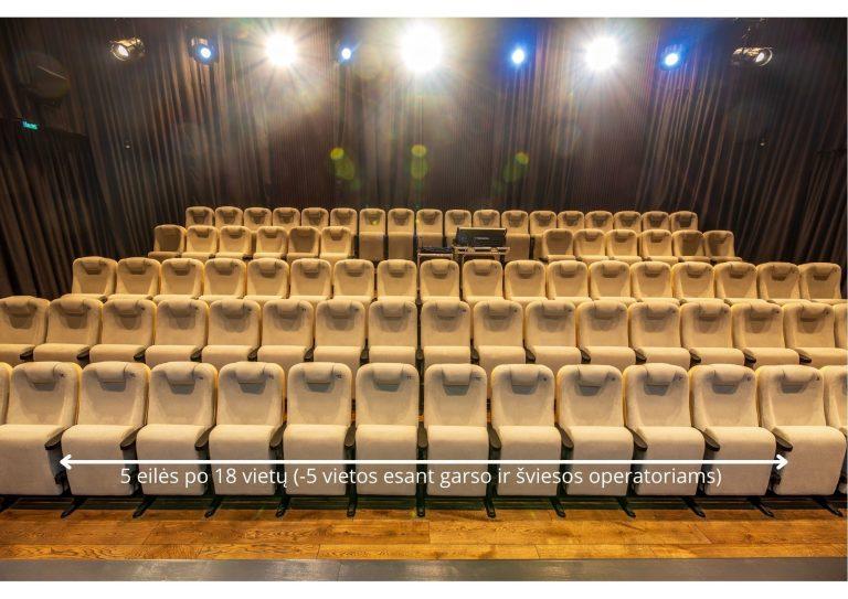Teatro salės išmatavimai Vietų skaičius